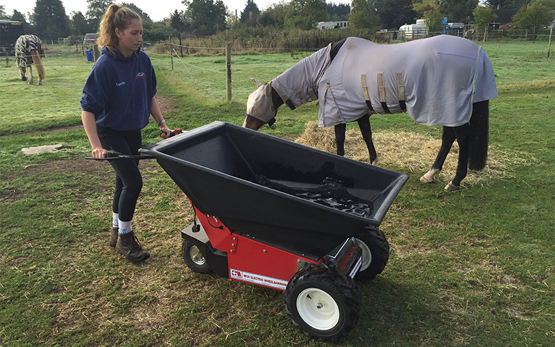 Using the MUV Electric Wheelbarrow for watering horses in a commercial stables. No engine noise to scare the horses.
